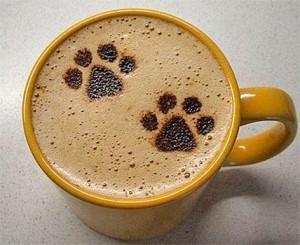 Royal Pets - TopTassut Oy - Kangasala - tassuttele ostoksille : )