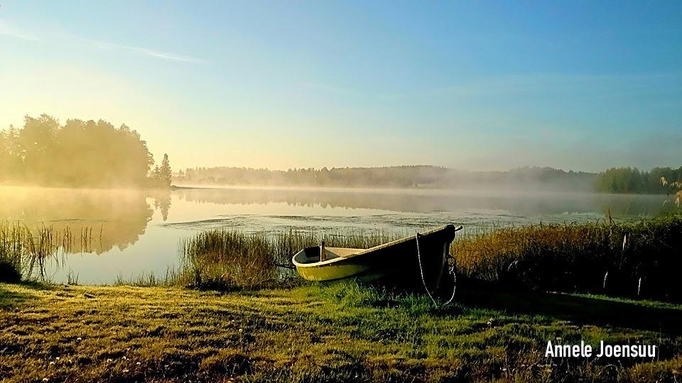 Luontokuvat - Kangasala - Annele Joensuu - aamu-usvaa järvellä